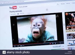 youtube video divertentissimi 2018 1